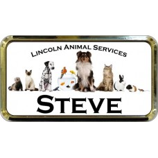"""Gold Plastic 1 1/2"""" x 3 Name Badge with Round Corners"""