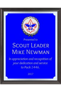 Boy Scout Awards