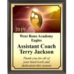 Golden Football Plaque