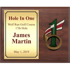 Hole In One Golf Plaque with Resin Ball Holder