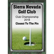 Ball and Pin Golf Plaque