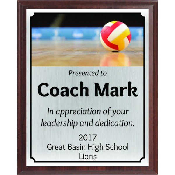 Red and Gold Volleyball Plaque