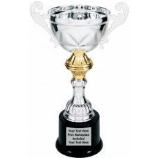 """Silver Metal Cup Trophy on Plastic Base, 10"""""""
