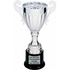 """Silver Metal Cup Trophy on Plastic Base, 8 3/4"""""""