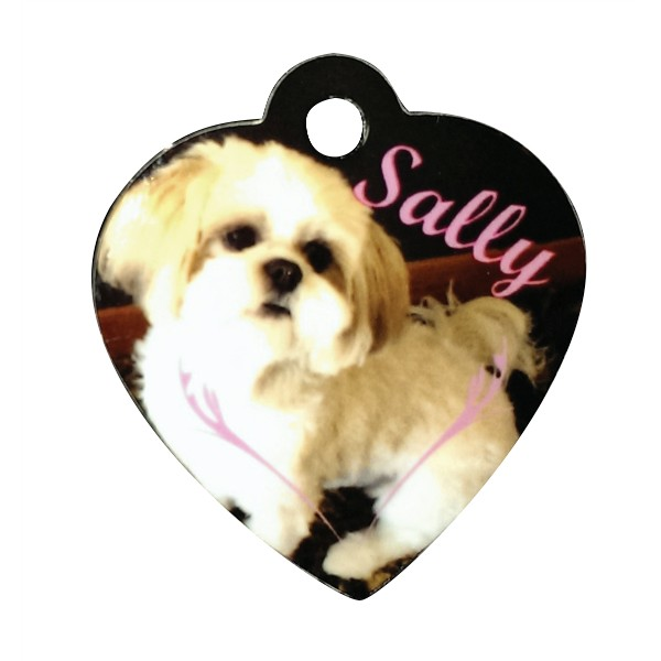 Heart Pet Tag
