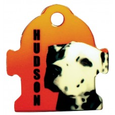 Fire Hydrant Pet Tag