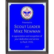 Boy Scout Awards