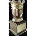 Gold Crown Fantasy Football Trophy