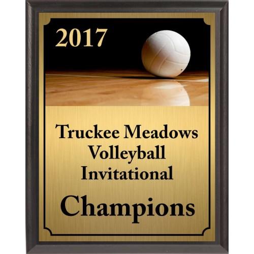 Volleyball On Dark Court Plaque